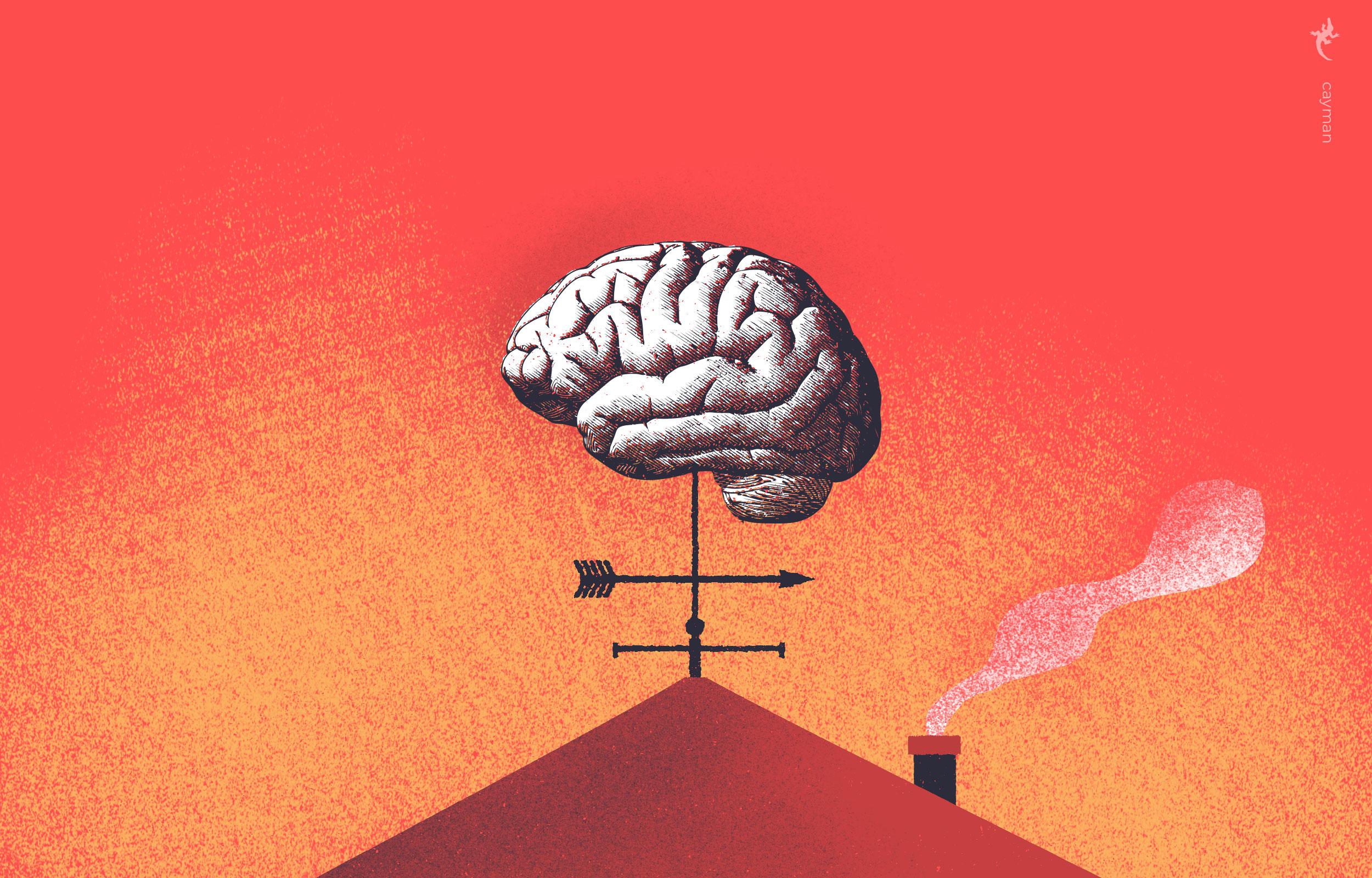 Illustratie van hersenen op een dak